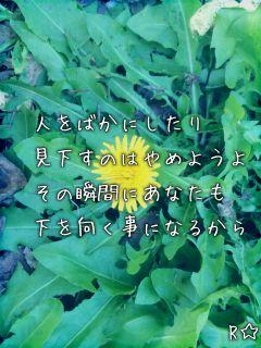 見下す(short word)